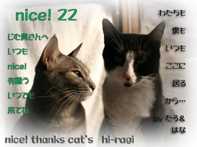 22_nice!_thanks.jpg